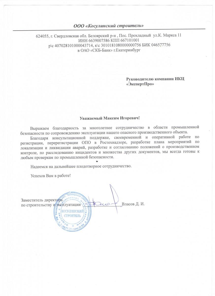 Зам. директора Власов Д. И.